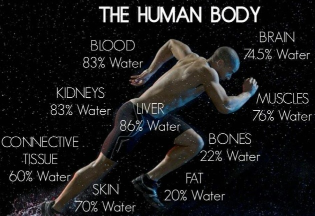 water-and-the-body