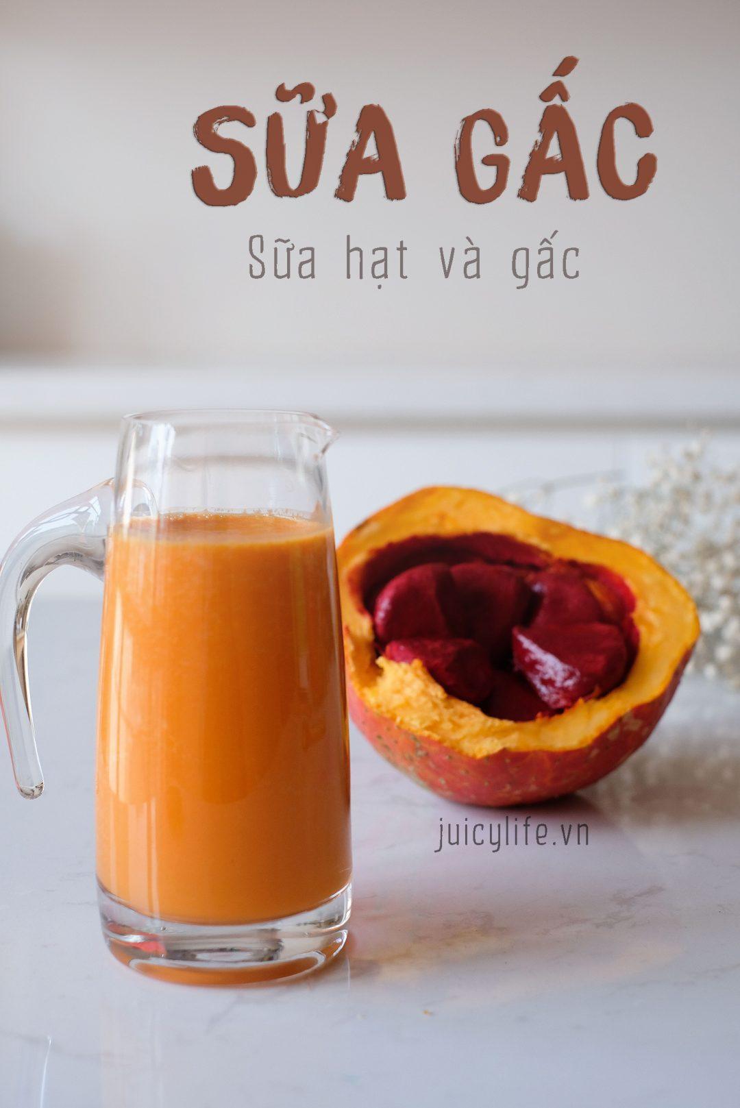 Công Thức Sữa Gấc cho đôi mắt sáng - Gac Nut Milk - Juicy Life